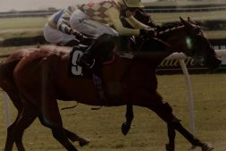 go-on-gal-winning-at-catterick-29-may-2021
